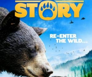 A Bear's Story DVD cover